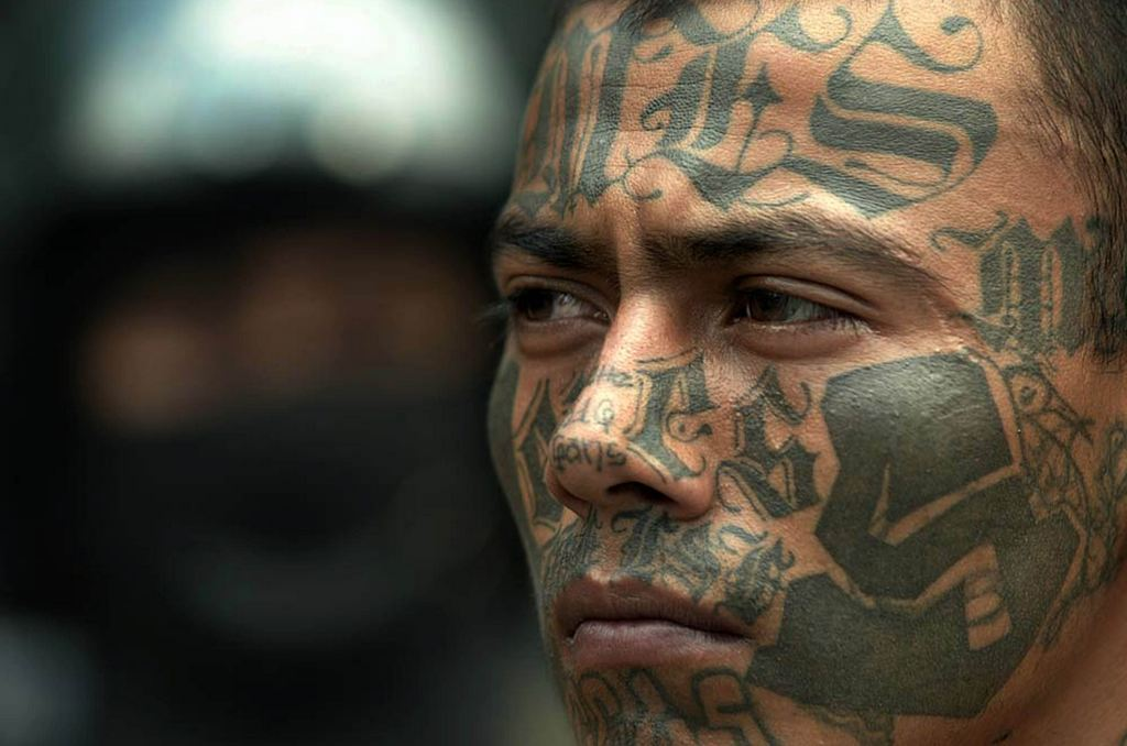 mara salvatrucha ms13 essay example Ms-13 gang – la mara salvatrucha: vol 96 mostly middle school age and up they are attracted to this gang and join to fulfill a sense of belonging.
