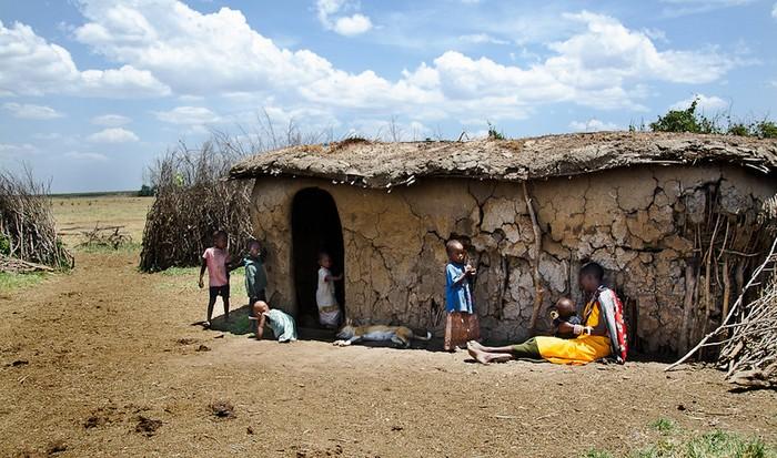 Rezerwat Masai Mara, Kenia, źródło: Internet
